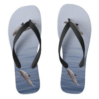 Dolphins Thongs