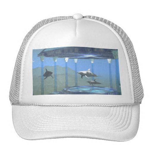 Dolphins Under Water Hat