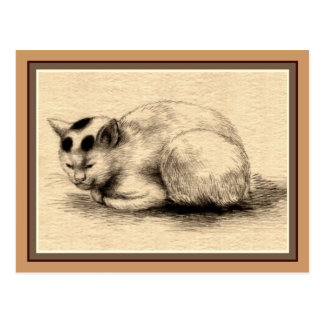 Domestic Cat Japanese Ink Drawing Postcard