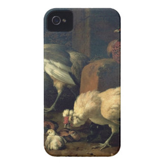Domestic fowl with a pheasant and peacocks iPhone 4 Case-Mate cases