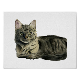 Domestic Medium Hair Cat Watercolor Painting Poster