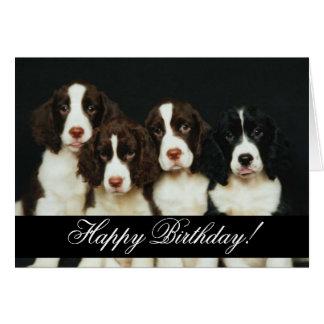 Domesticated Animals 252 Happy Birthday Card