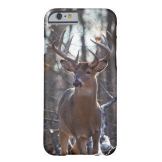 Dominant Buck Barely There iPhone 6 Case