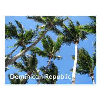 Dominican palm postcard