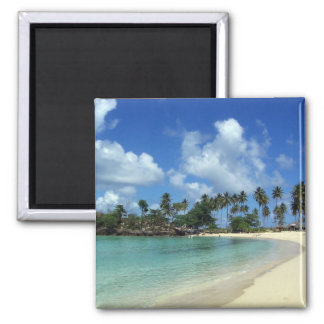 Dominican Republic Beach Magnet
