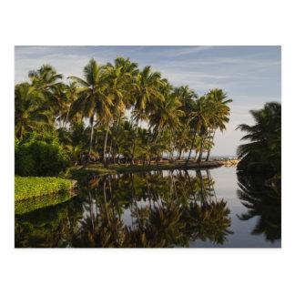 Dominican Republic, North Coast, Nagua, Playa Postcard