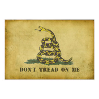 "Don't Tread On Me 24""x20"" Poster"