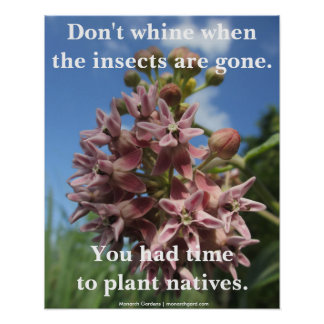 Don t Whine When the Insects Are Gone Posters