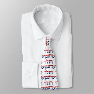 Donald Trump In Red, White & Blue Hebrew Tie