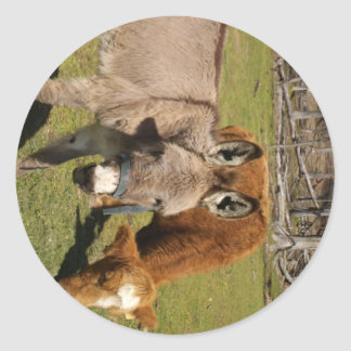 Donkey And Cow Sticker