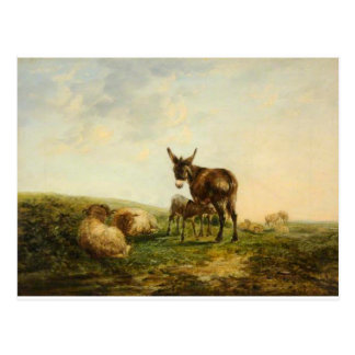 Donkey and Sheep by William Shayer Postcard