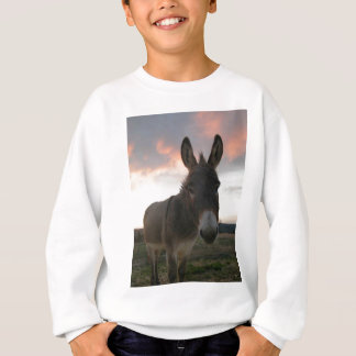 Donkey Art Sweatshirt