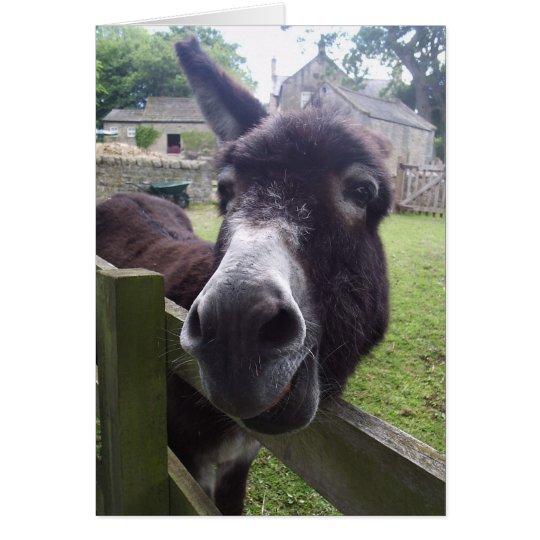 Donkey Birthday Wishes Card Zazzle
