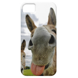 Donkey Humour iPhone 5 Cover