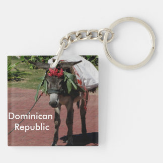 donkey in Dominican Republic Double-Sided Square Acrylic Key Ring