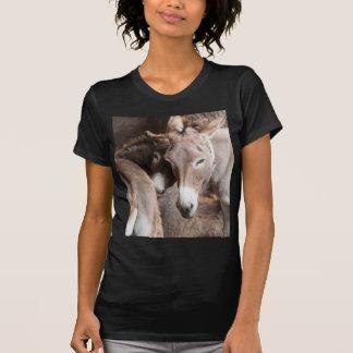 donkey in the farm T-Shirt