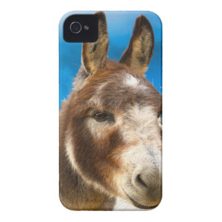 Donkey iPhone 4 Covers