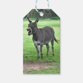 Donkey Laugh Gift Tags