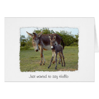donkey new born card