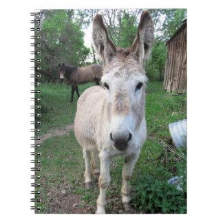 Donkey Notebooks