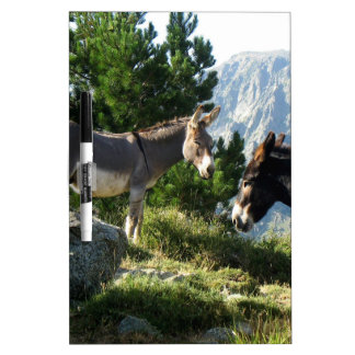 Donkey of Corsica Dry Erase Boards