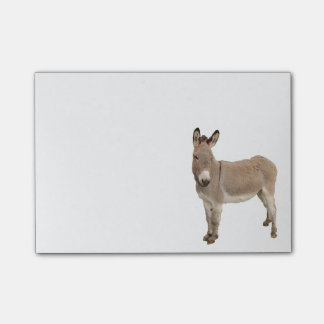 Donkey Painting Design Post-it Notes