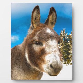 Donkey Plaque