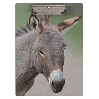 Donkey Portrait Clipboard