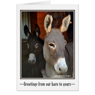 Donkeys Card