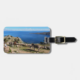 Donkeys' paradise luggage tag
