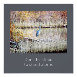 Don't Be Afraid to Stand Alone