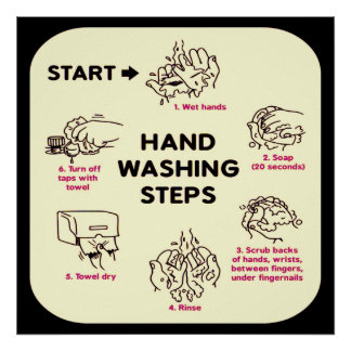 Don't Be Gross: How to Wash Hands Instructional Poster