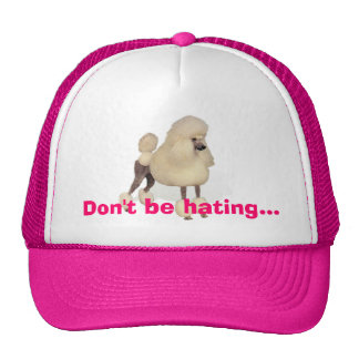 Don't be hating...trucker cap