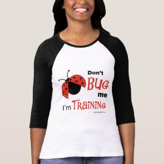 Don't Bug Me raglan shirt