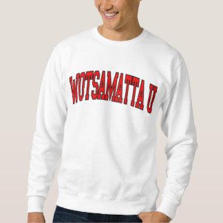 don't buy this one, lo rez sweatshirt