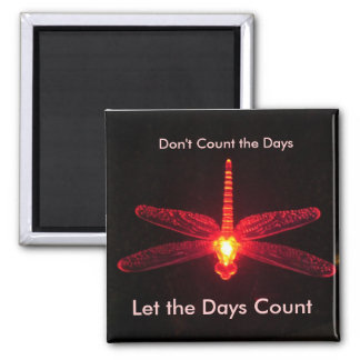 Don't Count the Days Magnet