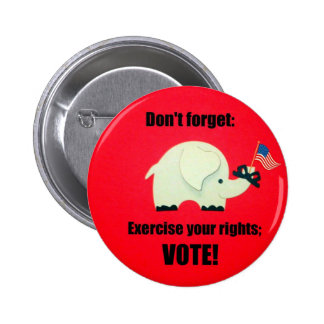 Don't forget: Exercise your rights; VOTE! Pinback Buttons