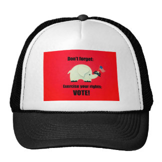 Don't forget: Exercise your rights; VOTE! Mesh Hat