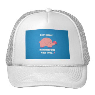 Don't forget Mammograms save lives. Mesh Hat