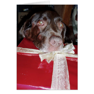 Don't forget your pets for Christmas! Card