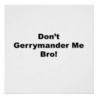 Don't Gerrymander Me Bro Protest Poster