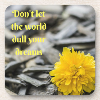 Don't let the world dull your dreams coasters