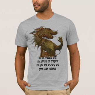 don't meddle with Dragons Design Tshirts gift idea