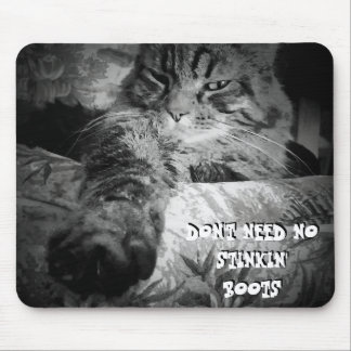 Don't Need No Stiking boots Cat Meme Mouse Pad