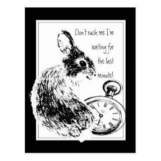 Don't Rush Me, Last Minute, Late Fun Rabbit Postcard