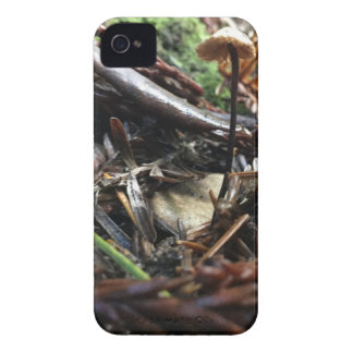 Don't Trip Mushroom iPhone 4 Covers