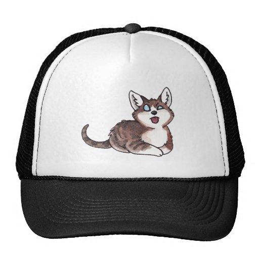 Doofy Cat Mesh Hats