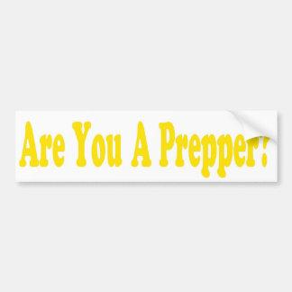 Doomsday Preppers sticker Bumper Sticker