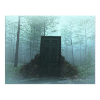 Doors to Nowhere 1 Postcard