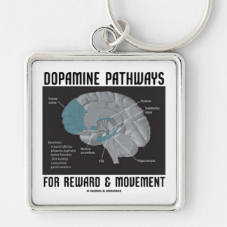 Dopamine Pathways For Reward & Movement Key Chain